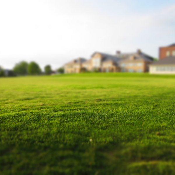 Comment décorer votre jardin en utilisant du gazon synthétique ?